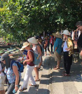 https://www.mindonly.nl/uploads/fotos/Vietnam-141.jpg