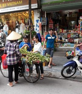 Onze reis 2019 https://www.mindonly.nl/uploads/fotos/Vietnam-6.JPG